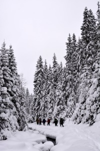 Foto: Anna Birkeland Olerud Fra Sinnerdammen til Spålen